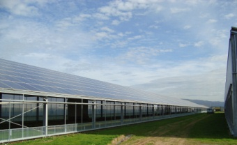 Enerpoint realises big PV greenhouses, ground PV plants, industrial roofs.